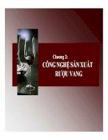Bài giảng chương 2 công nghệ sản xuất rượu vang