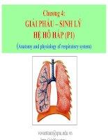 chương 4 giải phẩu – sinh lý hệ hô hấp (p1)