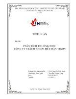 Tiểu luận quản trị thương hiệu - PHÂN TÍCH THƯƠNG HIỆU CÔNG TY TRÁCH NHIỆM HỮU HẠN TIGON