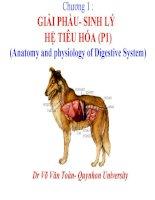 chương 1  giải phẩu- sinh lý hệ tiêu hóa (p1)