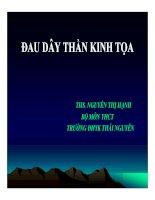 Bài giảng Y học cổ truyền: Đau dây thần kinh tọa - Ths. Nguyễn Thị Hạnh