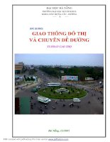 Bài giảng Giao thông đô thị và chuyên đề đường - TS. Trần Cao Thọ