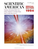 scientific american   -  1993 12  -  taming africanized killer bees