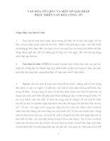 VĂN HÓA TỔ CHỨC VÀ MỘT SỐ GIẢI PHÁP PHÁT TRIỂN VĂN HÓA CÔNG  SỞ