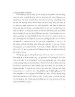 tiểu luận những giá trị và những hạn chế trong tư tưởng xã hội chủ nghĩa thế kỷ xviii của pháp