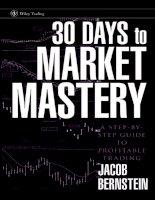 days to market mastery - bernstein 2007