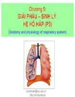 chương 4 giải phẩu – sinh lý hệ hô hấp (p3)