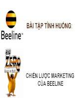 bài tập tình huống chiến lược marketing cuae beeline