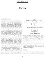 Flavor 1 - Principle of food chemistry