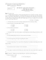 Tuyển tập các đề thi chọn học sinh giỏi môn ngữ văn lớp 6