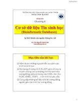 Bài giảng Tin sinh học: Chương 2 - Thạc sĩ. Nguyễn Thành Luân