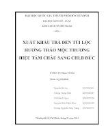 Tiểu luận xuất khẩu trà đen túi lọc hương thảo mộc thương hiệu Tâm Châu sang CHLB  Đức