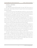 LUẬN VĂN CÔNG NGHỆ THỰC PHẨM TÌM HIỂU VỀ HACCP VÀ XÂY DỰNG HỆ THỐNG HACCP CHO QUY TRÌNH SẢN XUẤT CÁ TRA FILLET ĐÔNG LẠNH