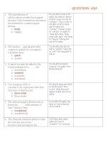 Bài tập về tính từ