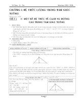 Giáo án môn toán hình lớp 9 học kì I