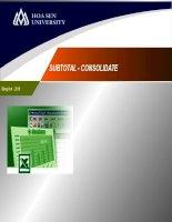 bài giảng các chức năng subtotal và consolidate trong excel