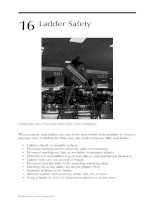 Industrial Safety and Health for Goods and Materials Services - Chapter 16 pot