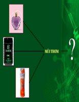 Bài giảng điện tử môn hóa học: khái niệm về tecpen potx