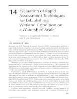WETLAND AND WATER RESOURCE MODELING AND ASSESSMENT: A Watershed Perspective - Chapter 14 pptx