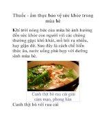 Thuốc - ẩm thực bảo vệ sức khỏe trong mùa hè pdf