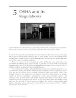 Industrial Safety and Health for Goods and Materials Services - Chapter 5 pptx
