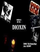 bài thuyết trình hóa kỹ thuật môi trường (chuyên đề Dioxin)