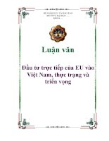 Luận văn: Đầu tư trực tiếp của EU vào Việt Nam, thực trạng và triển vọng pot