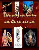 Bài giảng điện tử môn sinh học: thế giới động vật đa dạng phong phú doc