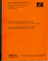 Báo cáo tài chính công ty cổ phần đầu tư phát triển công nghiệp thương mại Củ Chi_Năm tài chính kết thúc ngày 31 tháng 12 năm 2010 pptx