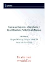 Experiences in Quality Control in the Audit Process and Audit Quality docx