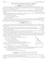Bài tập tổng hợp ôn thi HKII Vật lý lớp 10 pot