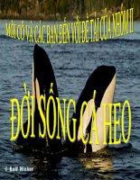 Bài giảng điện tử môn sinh học: đời sống của cá heo potx
