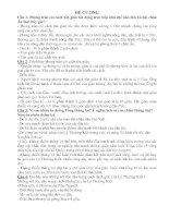 đề cương ôn tập môn lịch sử lớp 7 pdf