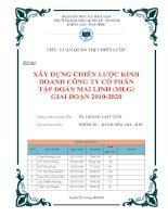 Xây dựng chiến lược kinh doanh công ty cổ phần tập đoàn mai linh (MLG) giai đoạn 2010 2020