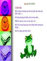 Bài giảng điện tử môn sinh học: ếch đồng doc