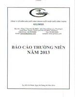 báo cáo thường niên năm 2013 KIỂM ĐỊNH HIỆU QUẢ CỦA MÔ HÌNH BA NHÂN TỐ FAMA FRENCH TRÊN THỊ TRưỜNG CHỨNG KHOÁN VIỆT NAM