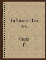 The Statement of Cash Flows pdf