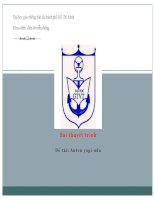 bài báo cáo Anten yagi uda (1)