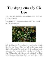 Tác dụng của cây Cà Leo pdf
