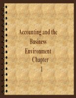 Accounting and theBusiness Environment pot