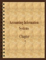 Accounting Information Systems pdf
