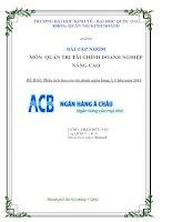 BÀI TẬP NHÓM MÔN: QUẢN TRỊ TÀI CHÍNH DOANH NGHIỆP NÂNG CAO ĐỀ BÀI: Phân tích báo cáo tài chính ngân hàng Á Châu năm 2010
