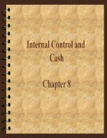 Internal Control and Cash pptx