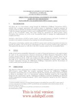 STANDARD STATEMENT OF WORK FOR FINANCIAL AUDITS OF ACCOUNTABLE ENTITIES _part1 pptx