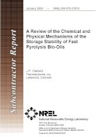 A review of the chemical and physical mechanisms of the storage stability of fast pyrolysis bio oils
