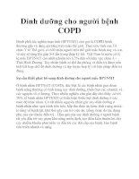 Dinh dưỡng cho người bệnh COPD ppt
