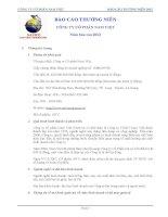 báo cáo thường niên công ty cổ phần nam việt năm báo cáo 2012