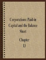 Corporations: Paid-inCapital and the Balance Sheet pot