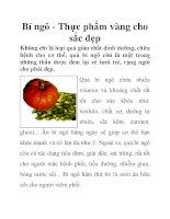 Bí ngô - Thực phẩm vàng cho sắc đẹp pdf