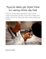 Nguyên nhân gây bệnh Viêm tai xương chũm cấp tính doc